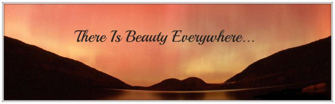 America the Beautiful – God Shed His Grace On Thee